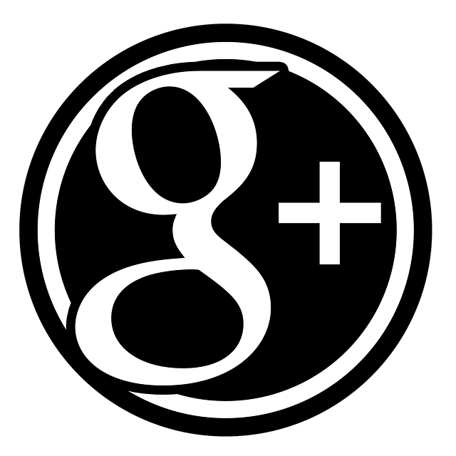 Want to be Found on the Internet? Use Google Plus.